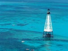 alligator reef lighthouse islamorada florida keys homes